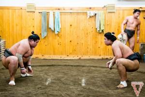 tokyo sumo training